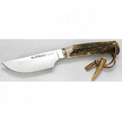 Cuchillo Muela Beagle